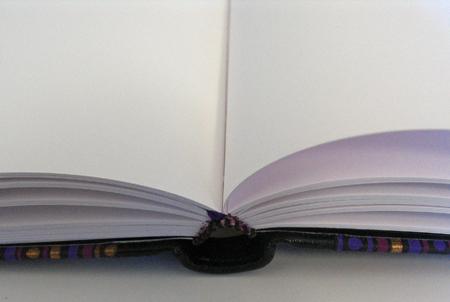 Sprungrückenbuch